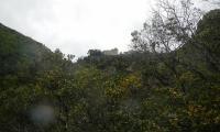 forra-di-prodo-0053-sercant-2012-.jpg