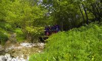 torrente-aviana-0001-sercant-2013.jpg