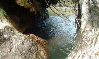 torrente-campiglio-0037-sercant-2012.jpg