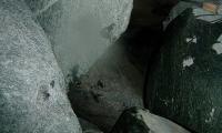 torrente-cormor-0062-sercant-2012.jpg