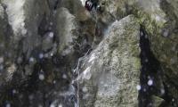 vajo-dell-orsa-0033-sercant-2012.jpg