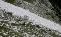 alta-via-dolomiti-4-0105-sercant-2012.jpg