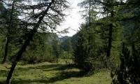 alta-via-dolomiti-4-0130-sercant-2012.jpg