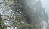 valle-lesine-0038-sercant-2013-.jpg