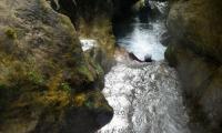 torrente-albola-1001-sercant-2012.jpg