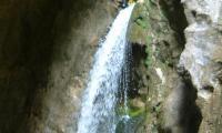 torrente-albola-1018-sercant-2012.jpg