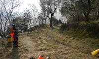 torrente-baes-0024-sercant-2013.jpg
