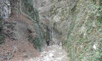 torrente-baes-0030-sercant-2013.jpg