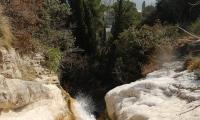 torrente-baes-0078-sercant-2013.jpg